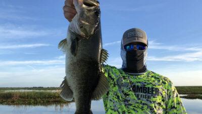 big bass glide baits- fishing deeper water