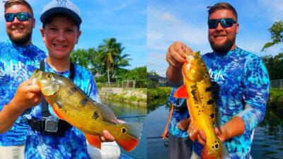 Summer Rain Exotic Fishing