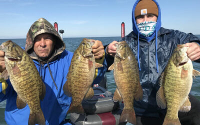Lake Erie Bass Charters in Erie Pennsylvania with Capt Mark Rose