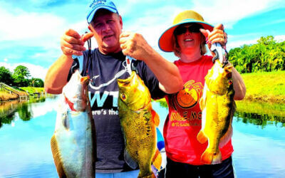 October Palm Beach Fishing Report for Florida Peacock Bass