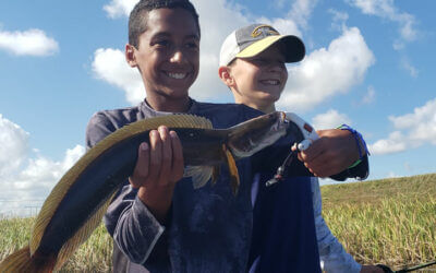 October Peacock Bass Fishing Reports in South Florida with Experts