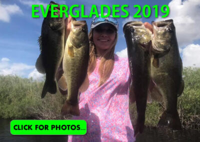 2019 Florida Everglades Pictures