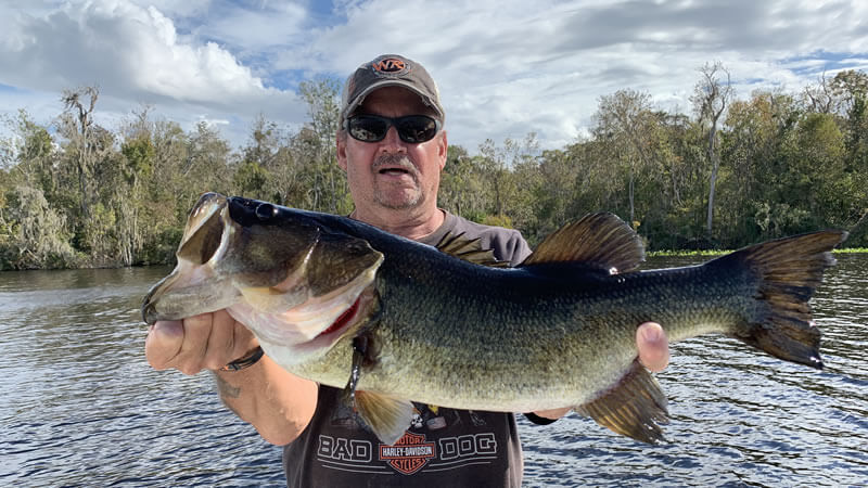 Sandbar North Florida Fishing for Florida Bass with Local Experts