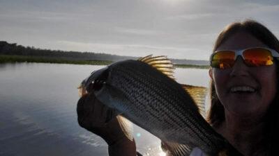 Sandbar North Florida Fishing 3