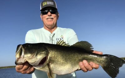 Current February Okeechobee Report for Florida Largemouth Bass