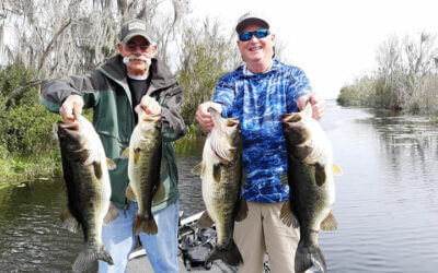March Harris Chain Fishing Report for Trophy Largemouth Bass
