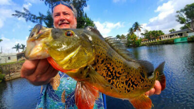 Port st lucie fishing charter