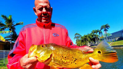March-Trophy-Peacock-Bass-Fishing-Trip