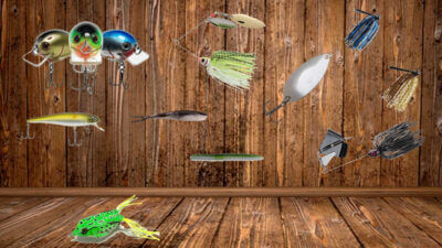 Artificial Lure Freshwater Fishing