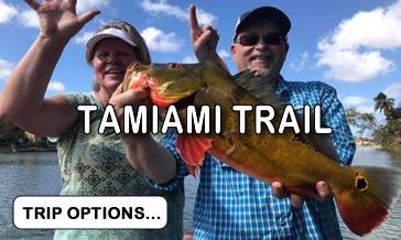 Tamiami Canal Trail Fishing