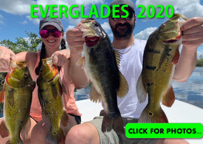 2020 Florida Everglades Pictures