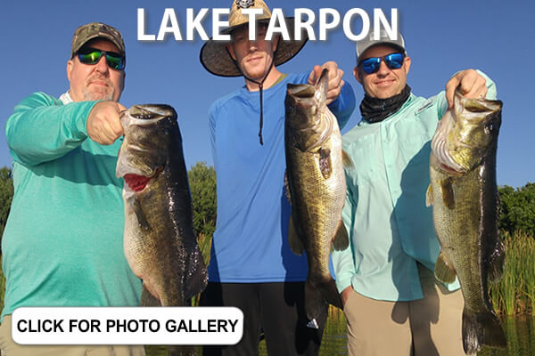 LAKE TARPON PICTURES