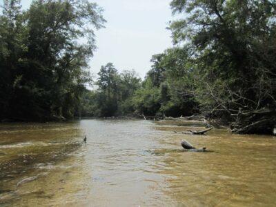 Yellow River Florida
