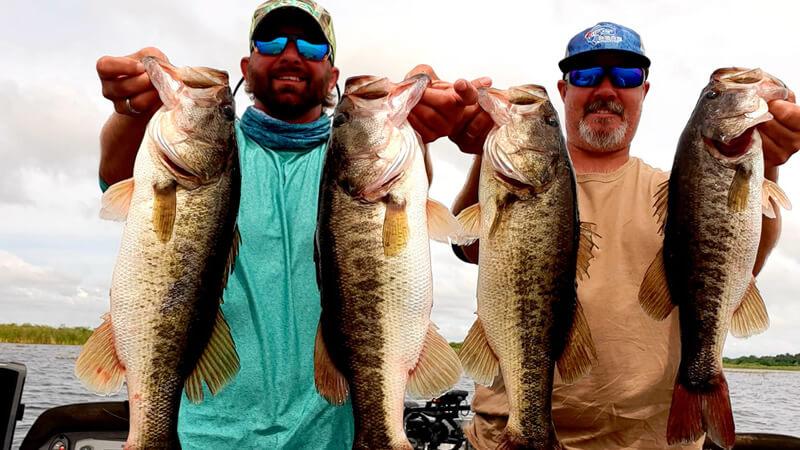 Largemouth bass fishing on Harris Chain of lakes