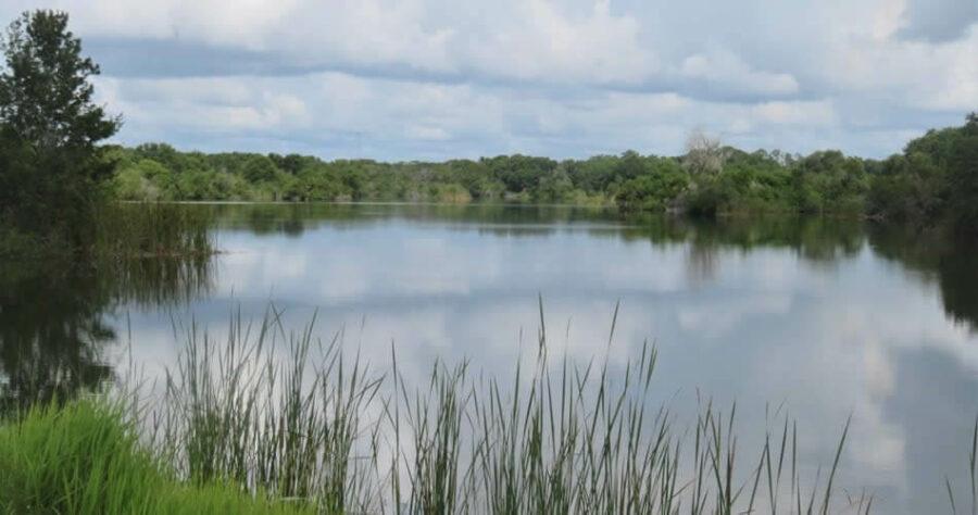 Saddle Creek Park