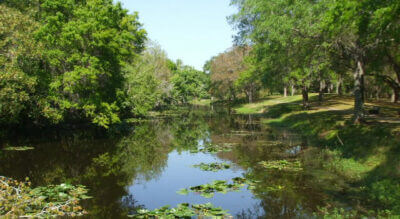 Sawgrass Lake