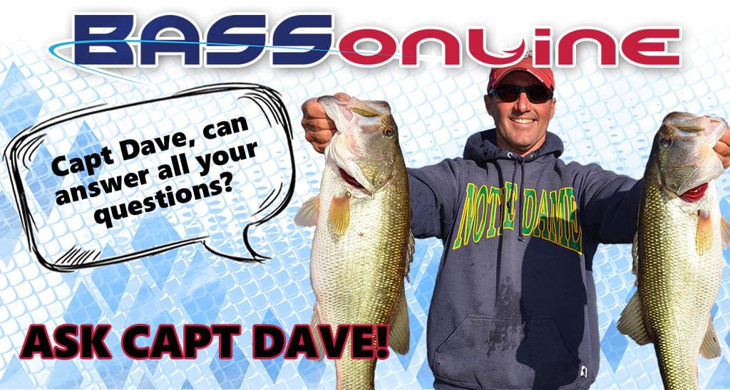 Capt Dave Lauer Questions