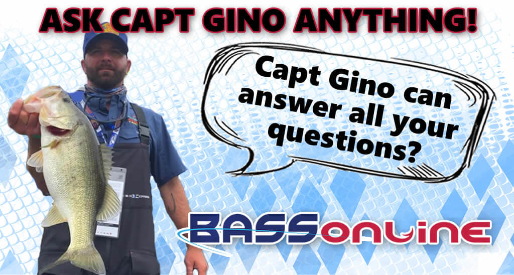 Capt Gino Losi Questions