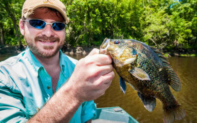 Panfishing in Florida: Everything You Need To Know About Panfish