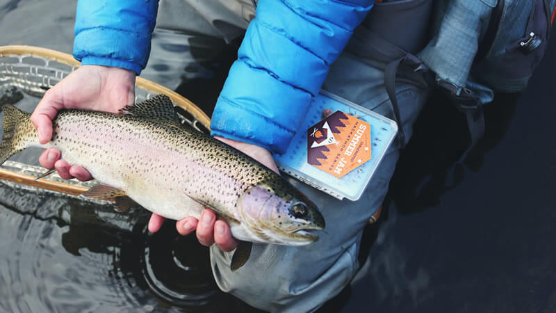 Best Fishing Holes for Anglers in Lake Erie