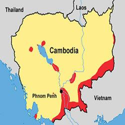 Cambodia Clown knifefish