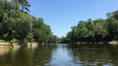 few places in Florida - Withlacoochee River
