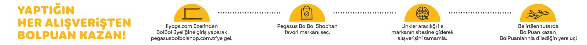 pegasus bolbolshop banner