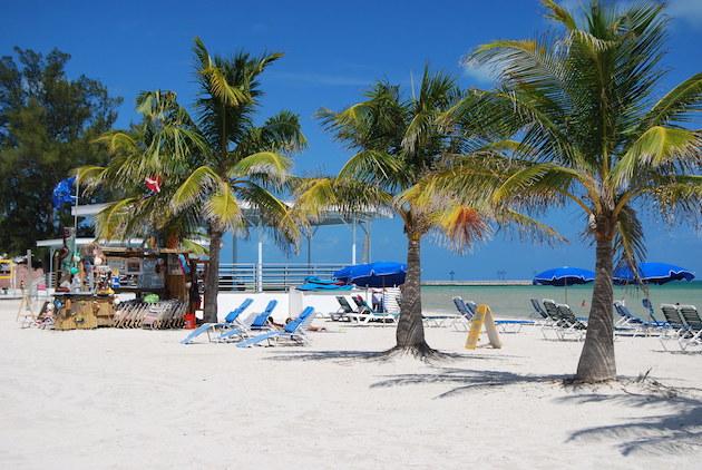 A Key West, FL beach with palm trees