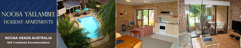 Noosa Yallambee Holiday Apartments noosa heads