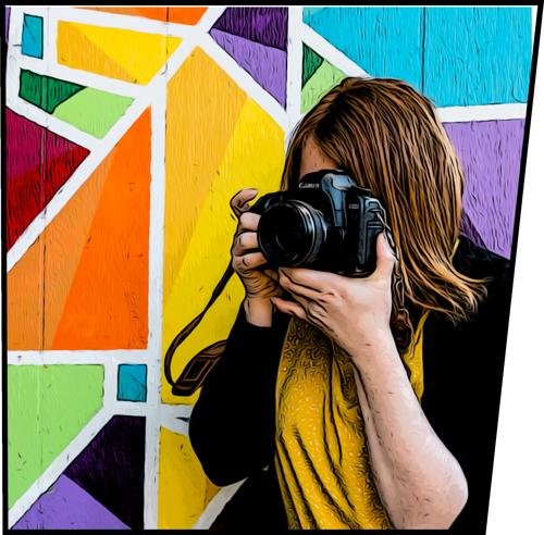 Silver Lark Photography profile picture