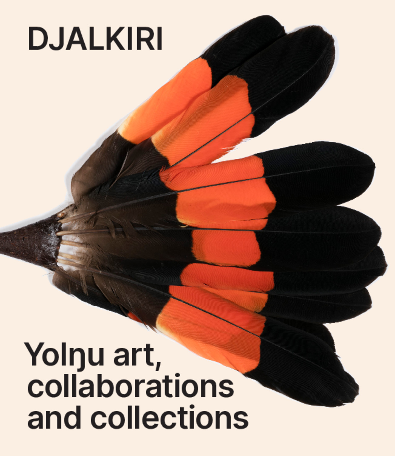 Djalkiri: Yolngu Art, Collaborations and Collections
