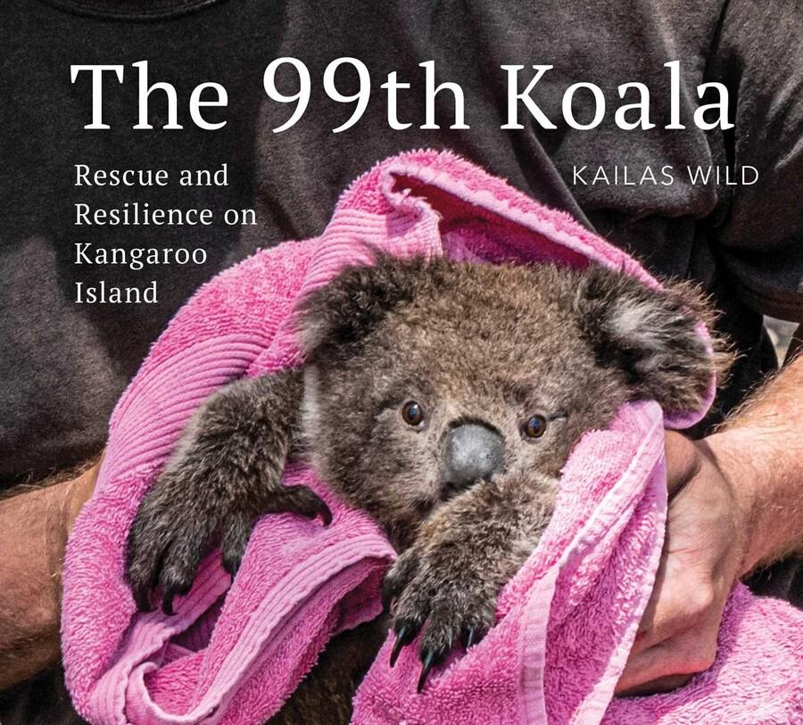 The 99th Koala