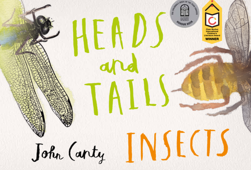 Heads And Tails: Insects