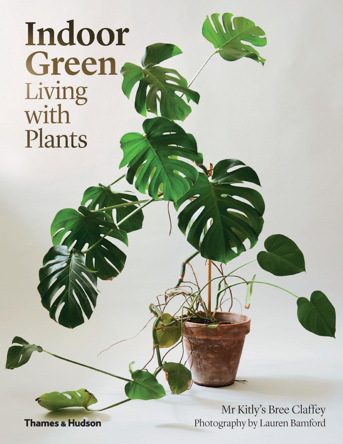 Indoor Green: Living with Plants
