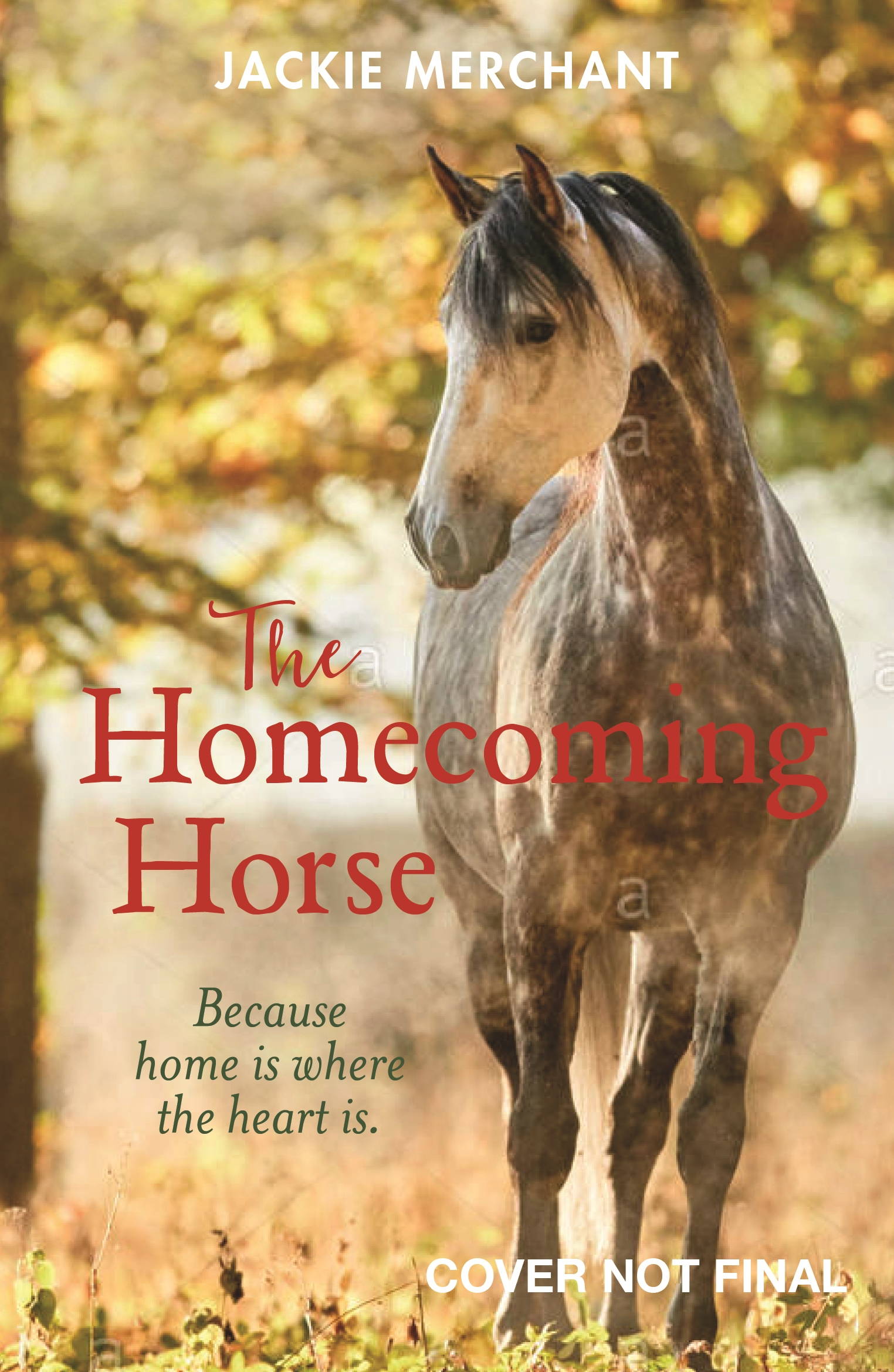 The Homecoming Horse