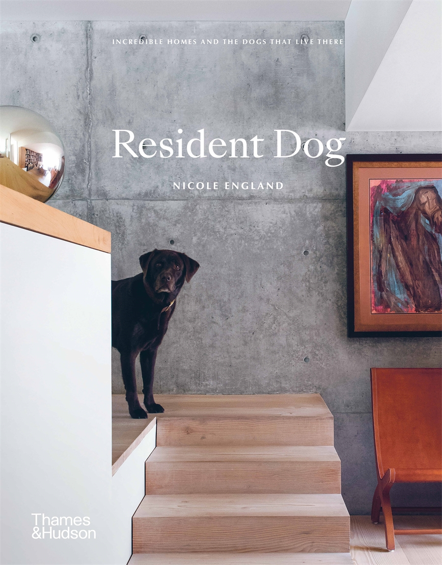 Resident Dog: Incredible Homes and the Dogs that Live There (compact edition)