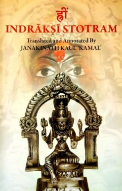 Indrakshi Stotram