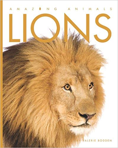 Lions: Amazing Animals Series