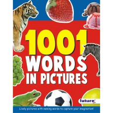 1001 Words in Picture