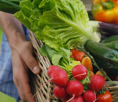 Cesta com verduras e legumes