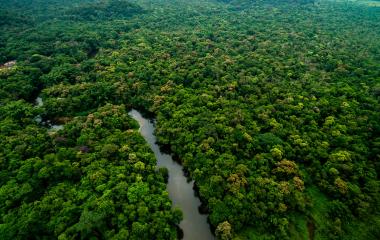 Vista aérea da floresta tropical na América Latina.