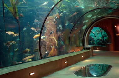 Oregon coast aquarium coupons discounts