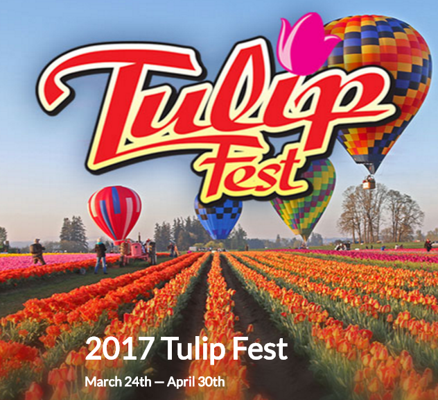 Spring Means Time Annual Wooden Shoe Tulip Festival By The Grand