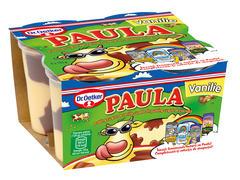 Budinca de vanilie si ciocolata Paula 500 g Dr. Oetker
