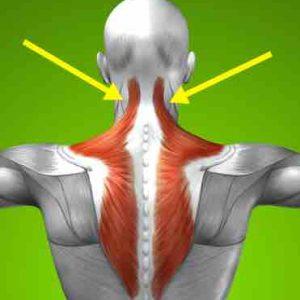 Douleur splenius du cou