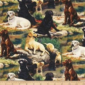 Wild Wings Best in Breed by Springs Creative Products, Persis Clayton Weirs $7.98 per yard