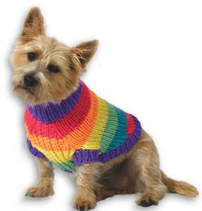 Rainbow Pooch Pullover