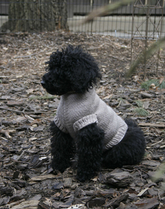 Top Down Dog Sweater by Traveling Tree Designs by Jessika Lane
