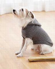 Hoodie Dog Coat by Bernat