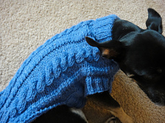 Shelter Me Cabled Dog Sweater by Heidi Haywood